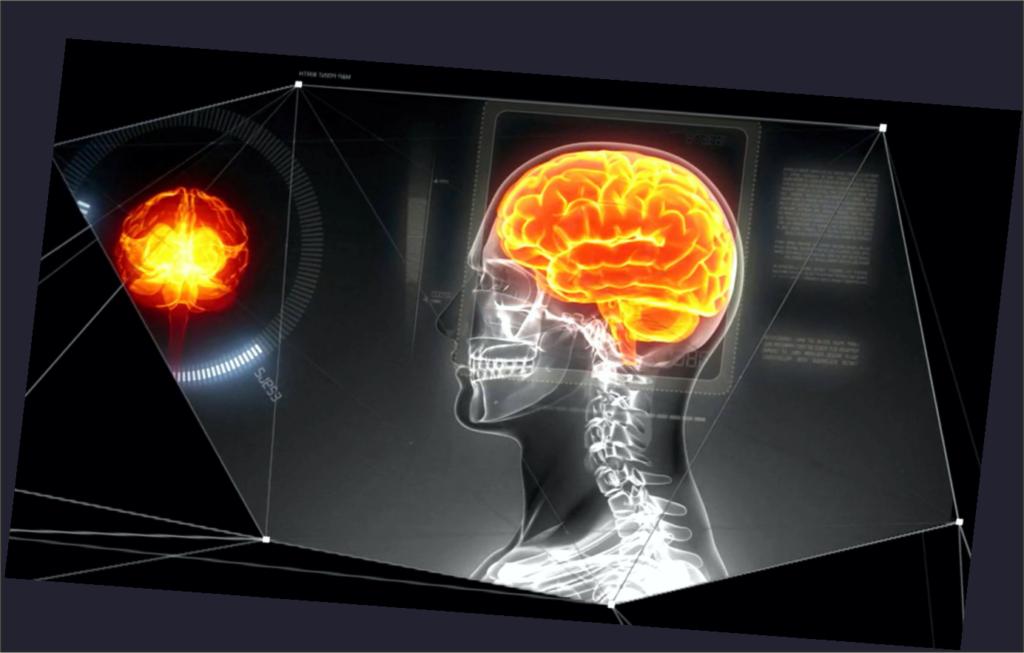 Проект «Человеческий мозг»