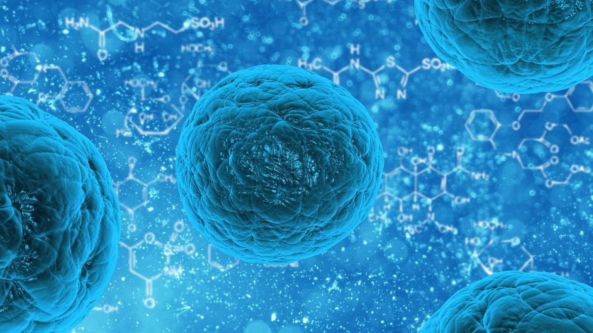 Клеточная пыль