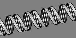 Теории старения: Гормонально-генетический подход
