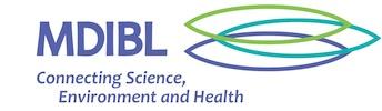 Продолжительность жизни нематод - лаборатория MDI