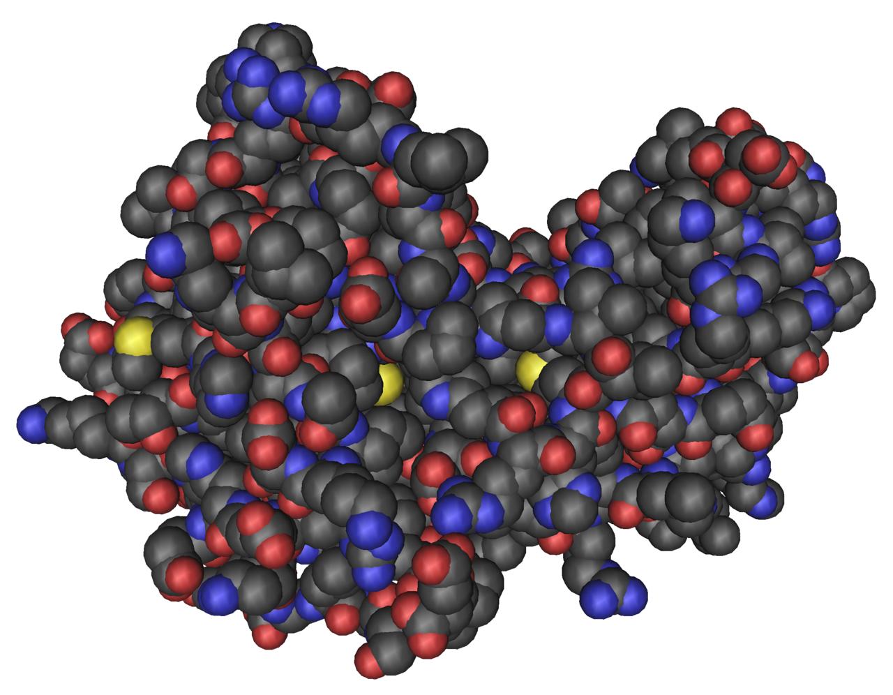 AMP Kinase - Нобилетин