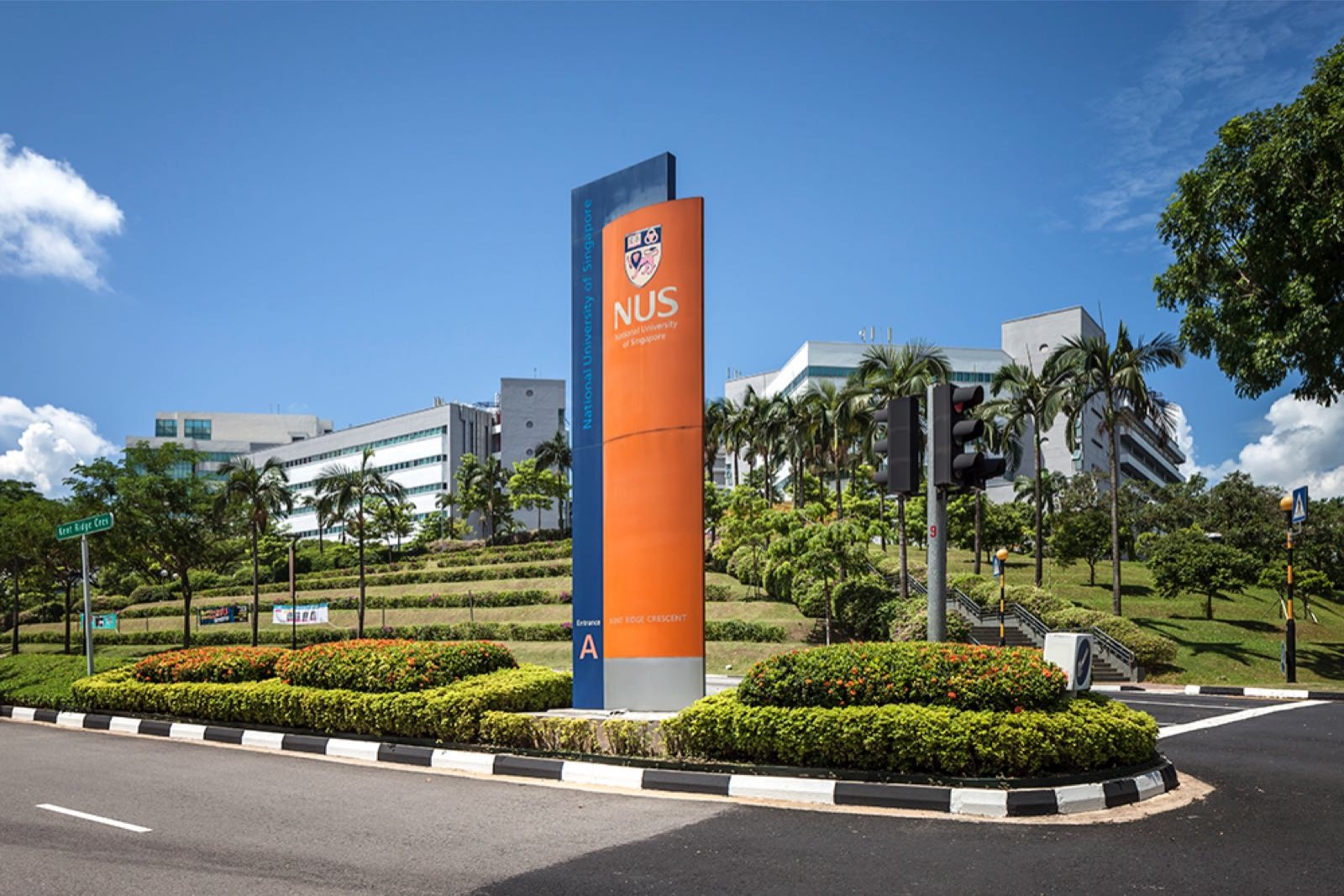 Национальный университет Сингапура - Положительная связь между природой и счастьем