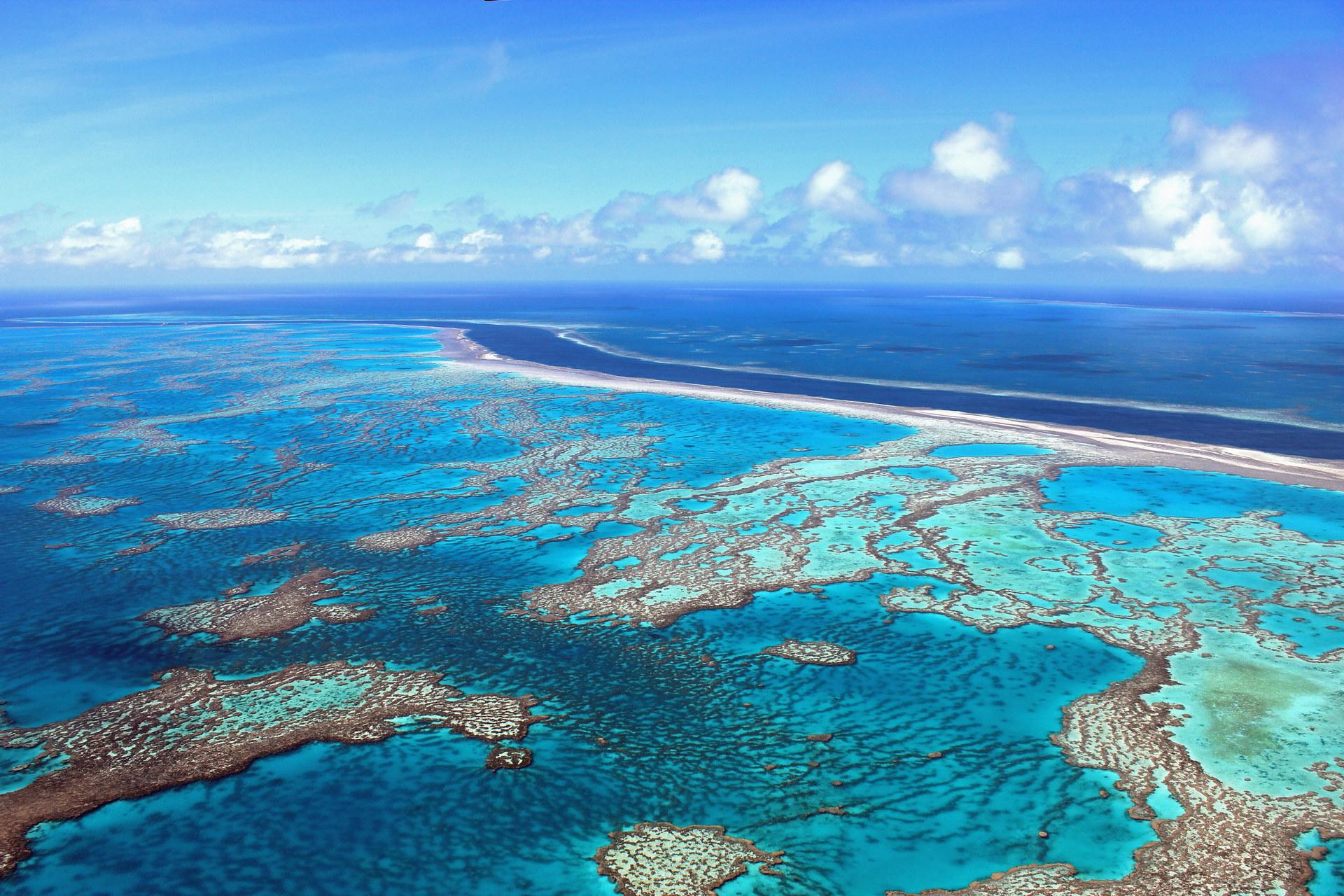 Большой барьерный риф - Положительная связь между природой и счастьем