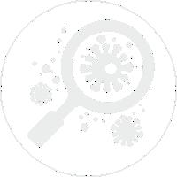 Возможность Вечности - Вирусы. Бактерии. Нанороботы. Клетки.