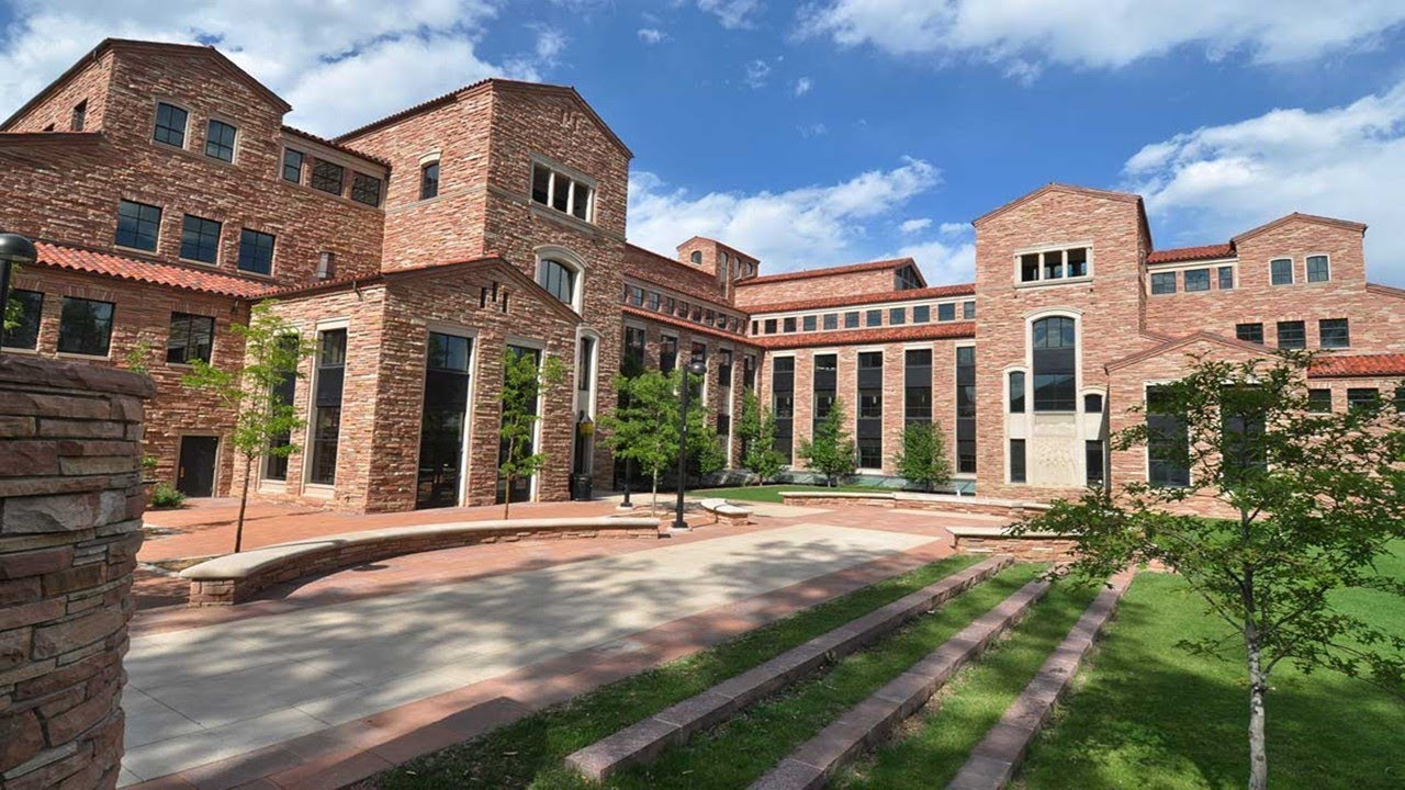 Университет Колорадо в Боулдере. Запрограммирован ли мозг на тоску -