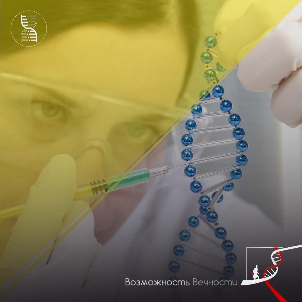 58% россиян готовы изменить свои гены