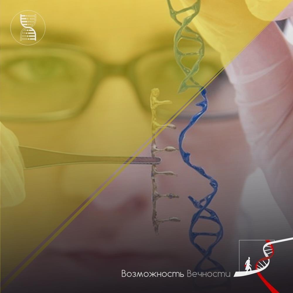 Сложная связь рассеянного склероза и микробиоты