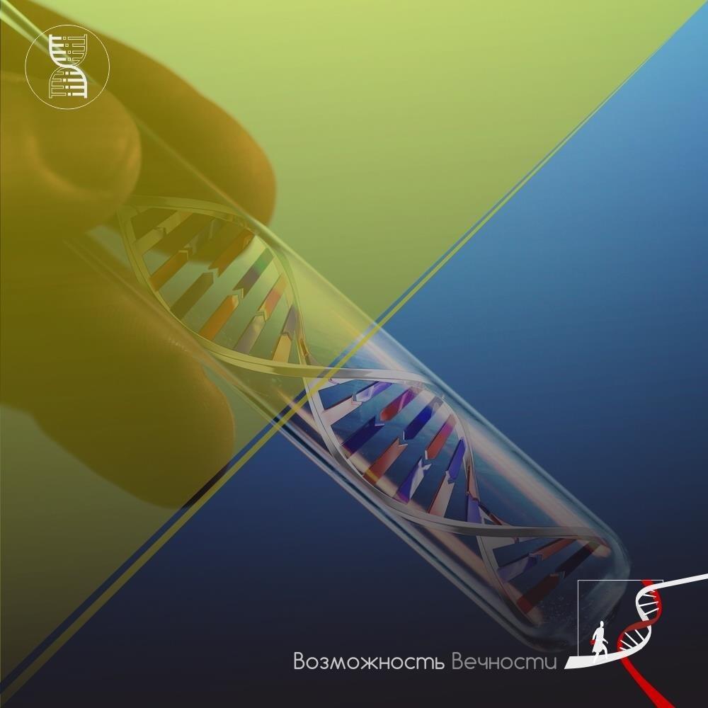 Высокая температура повреждает ДНК сперматоцитов